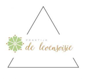 HEF COHERENCE PATTERN driehoek met logo